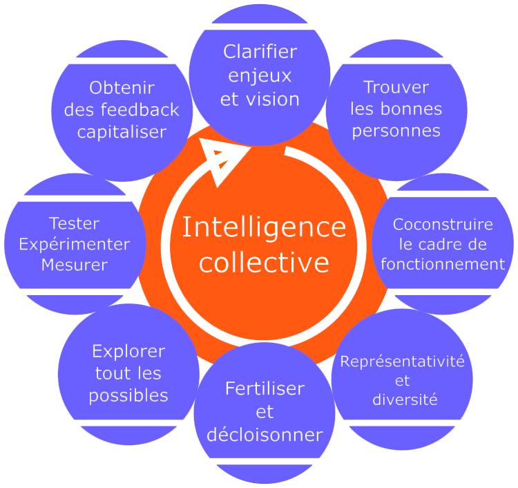 Le Feedback à 360 face à l'intelligence collective